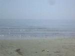 Sea_110629