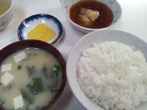 Fujishima_160503_3