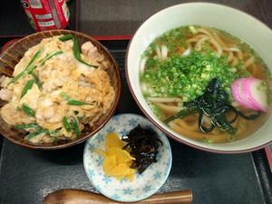 Hachiya_160819_1