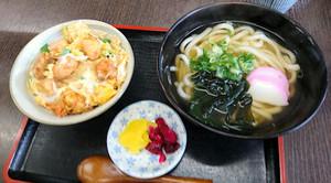 Hachiya_170114_1