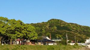 Shinryoku_170423_1